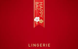 LINGERIE HAPPY BAG